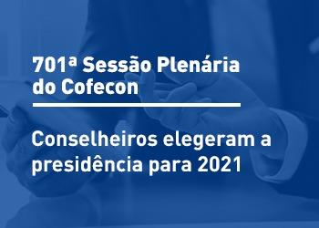 Última plenária de 2020 ocorreu de 10 a 12 de dezembro