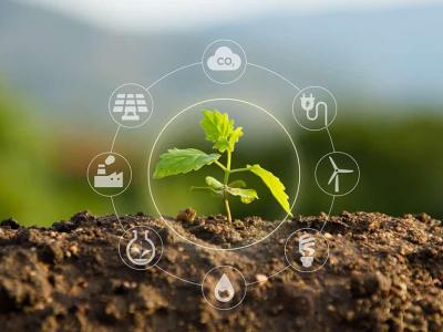 """Live """"Economia e a promoção da sustentabilidade ambiental no Brasil"""" acontecerá no canal do Corecon-SC"""