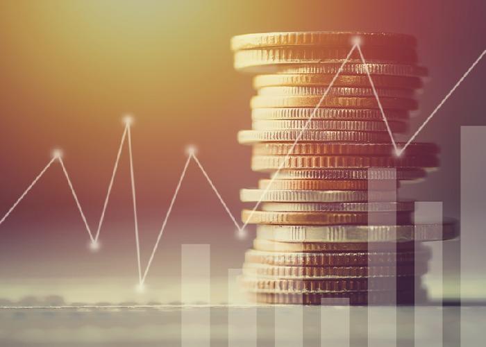 Cofecon realizou debate sobre política monetária