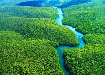 Destruição da Amazônia: efeitos do desmatamento para a população como um todo